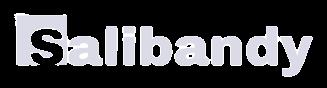 Salibandy logo
